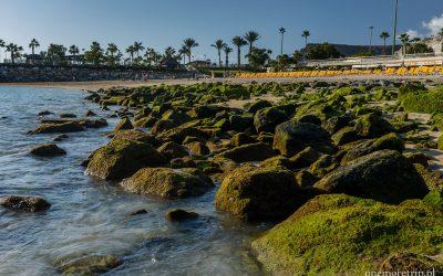 Plaża Amadores - błękitna woda, złoty piasek, zielone kamienie